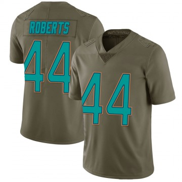 Youth Nike Miami Dolphins Elandon Roberts Green 2017 Salute to Service Jersey - Limited